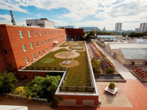 The Ohio State University (OSU) Green Roof at Howlett Hall featuring rooflite certified green roof media.